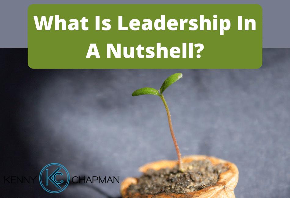 What Is Leadership In A Nutshell?